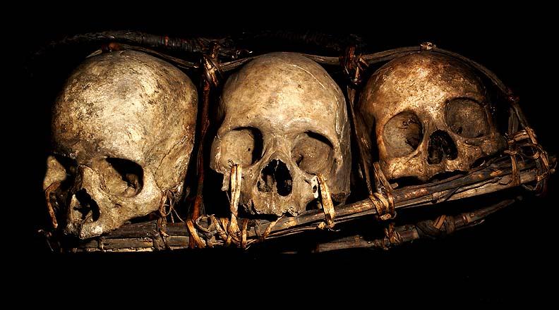 ifugao tribe three head hunting human trophy skulls three human skulls ...