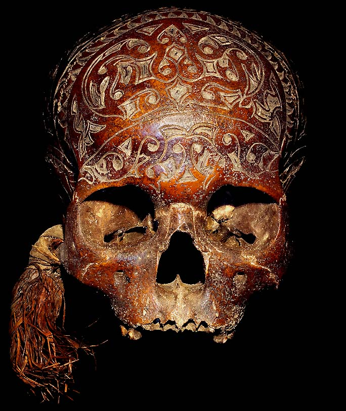 Dayak ngayau headhunting trophy skull tribal artifact