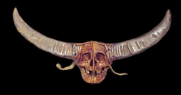Human Skull with Horns