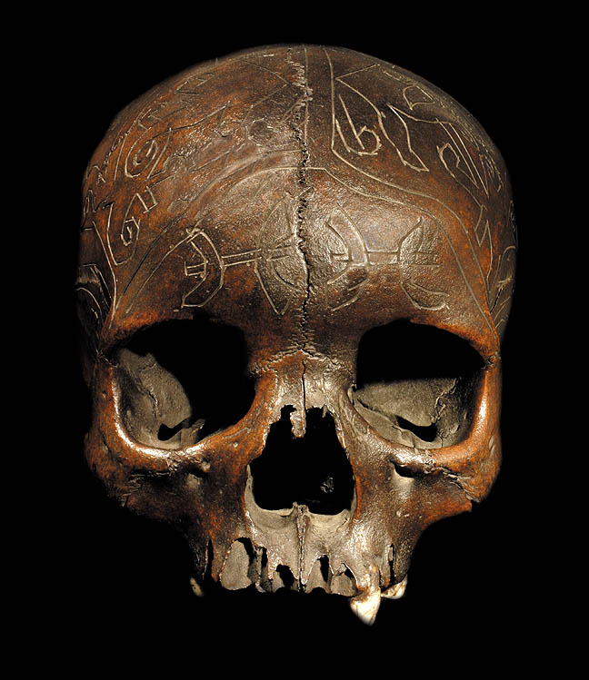 Dayak human trophy skull david howard tribal art