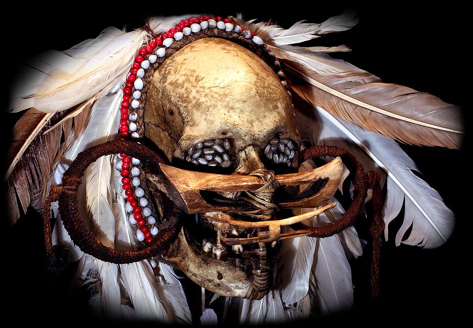 ASMATTRIBE: HUMAN ANCESTOR SKULL #19
