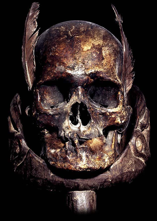 Human Skull Art